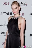 BIG SUR New York Movie Premiere #79