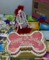 Pebble Iscious and Z Zee's Disco Birthday Bash  #1