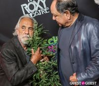 Green Carpet Premiere of Cheech & Chong's Animated Movie #55