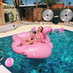 Brace Yourselves, Pool Swan Season Is Coming