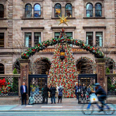 Would You Pay $1000 For A Christmas Tree?