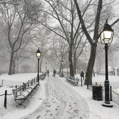 The Absolute Best NYC Spots To Visit When It Snows