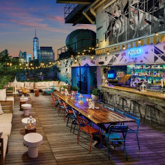 20 NYC Rooftop Bars To Get Your Drink On This Summer
