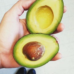 8 Things You Never Knew About Avocados