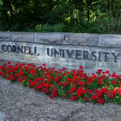 Cornell University: The Most Bizarre Ivy Of Them All