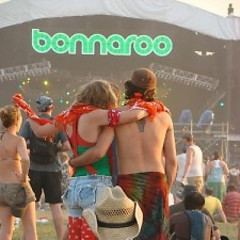 Bonnaroo 2010: We Know What You're Missing