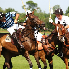 The Quintessential Guide To Preppy Sports: Polo