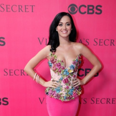 Katy Perry Blames Kitty Purry For Lyrical Innuendo