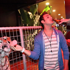 Party Don't: Caged Animals At Da Club