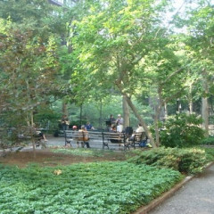 New York's Secret Gardens