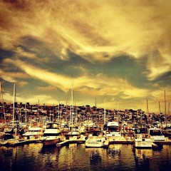 Photo Of The Day: Early Evening On Shelter Island