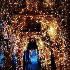 Photo Of The Day: West Village Lights Up For The Holidays