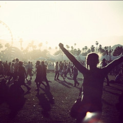 We're Looking For Coachella 2014 Photographers!