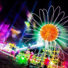 Last Minute Essentials For Electric Daisy Carnival New York