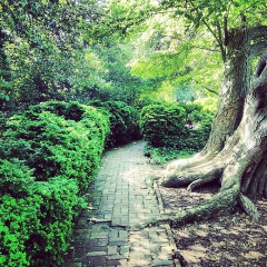Photo Of The Day: Dumbarton Oaks