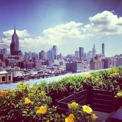Photo Of The Day: Perfect NYC Skyline From The PH-D Rooftop