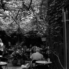 Unwind At Our Favorite NYC Hookah Bars