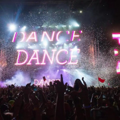 Electric Zoo 2013: Everything You Need To Know