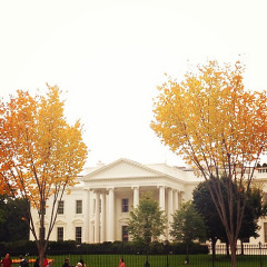 Instagram Of The Day: Fall Foliage At The White House