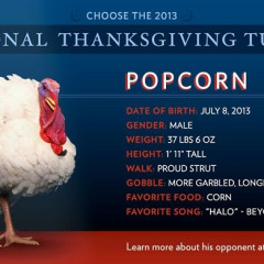 Vote To Pardon Your Favorite Turkey!