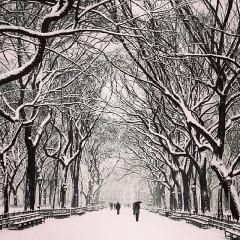 Instagram Round Up: Snowy Scenes From Winter Storm #Hercules