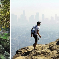 Get Fit In 2014 With These Awesome L.A. Hikes (Besides Runyon)