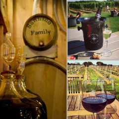 Vineyard Getaways: 5 Great Wineries To Check Out Near NYC