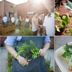 Interview: Salad For President Founder Julia Sherman Talks Growing Produce In NYC, Her New Garden At MoMA PS1 & More!
