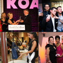 Last Night's Parties: Knock Out Abuse 2014 Annual Gala, Industree's