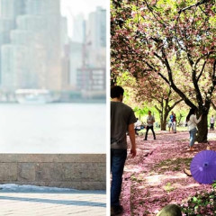 10 NYC Spots Perfect For A Unique Proposal