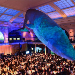 Seth Meyers Hosts The American Museum Of Natural History's 2015 Museum Gala