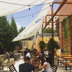 New York's Best Local Breweries To Tour & Taste