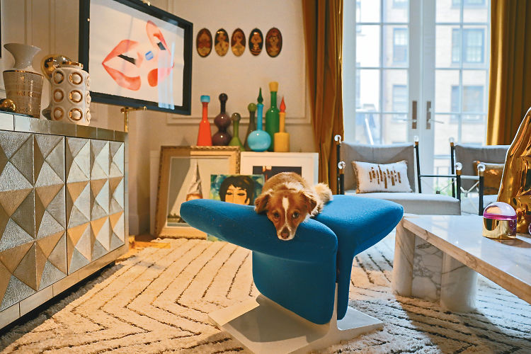 Inside The Luxurious Homes Of Designer Dogs