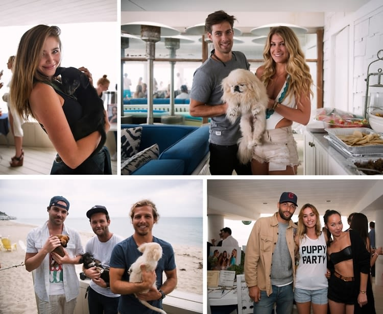Puppies & Parties Presents A Malibu Beach Puppy Party
