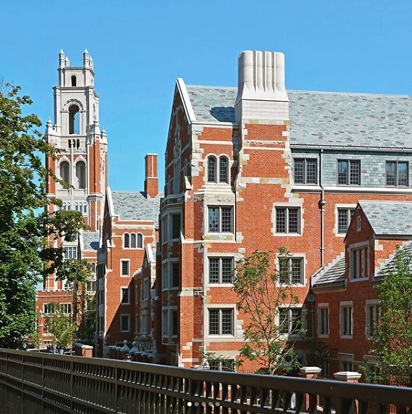 what do you mean by ivy league colleges