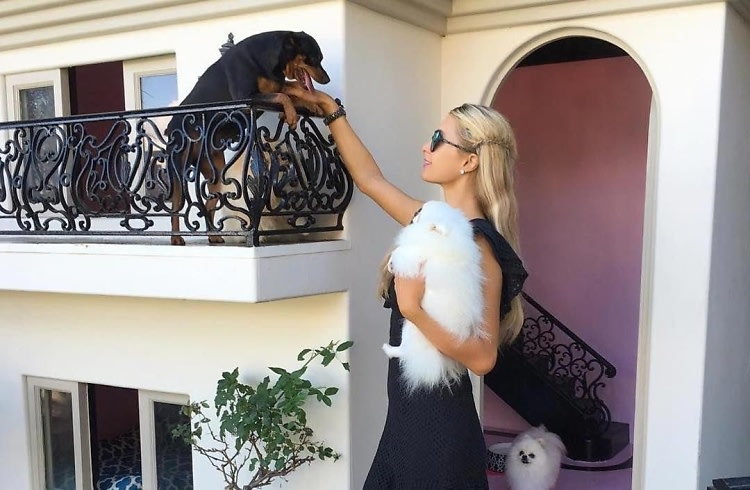 Of Course Paris Hilton's Dogs Live In Their Own $325,000 Mansion