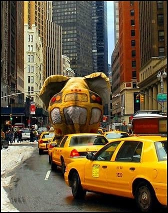 elephant in nyc