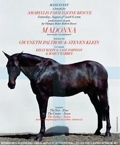amaryliss-farm-equine-rescue1
