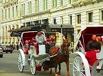 central park south horse carriages