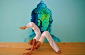 keep calm and fit with yoga in montauk