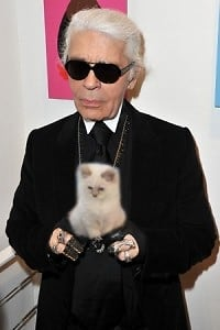 Everything You Need To Know About Karl Lagerfelds Cat Choupette
