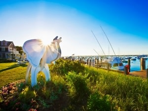 White Elephant in Nantucket