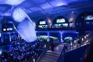 BrazilFoundation Gala After Party