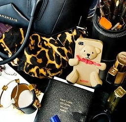 Moschino Teddy Case