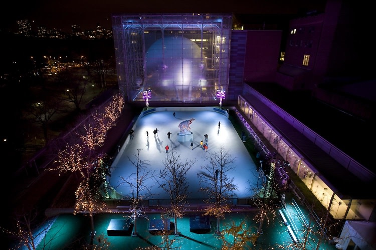 The Polar Rink at the American Museum of Natural History