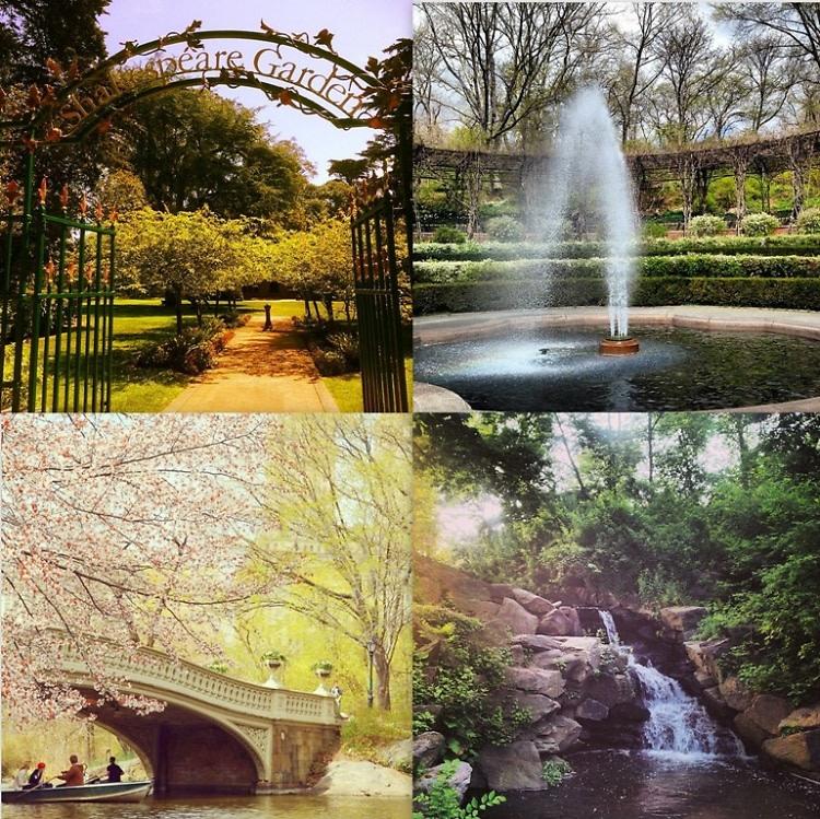 Central Park Guide