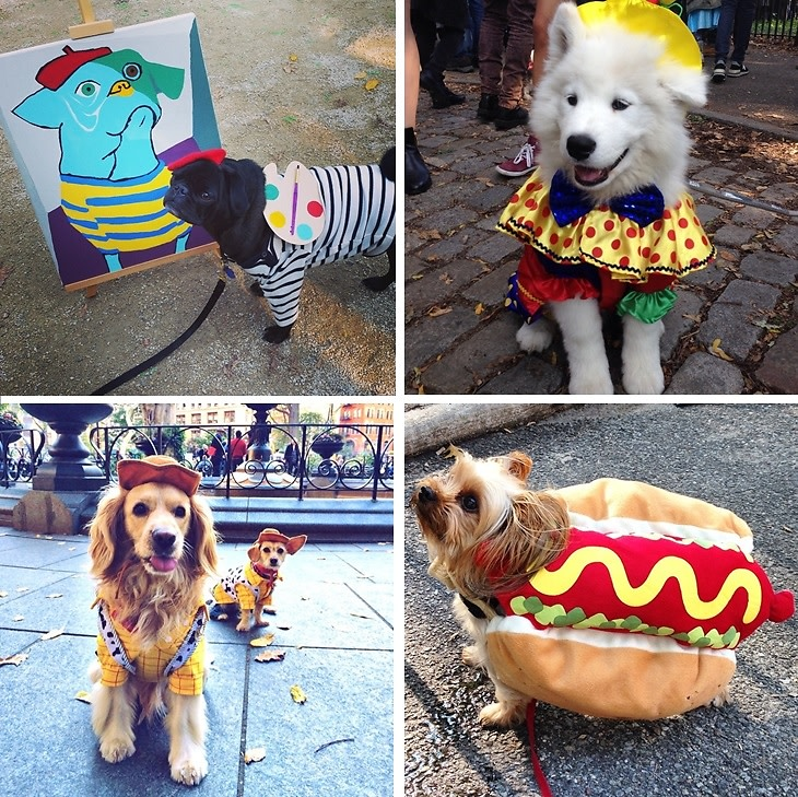 Canine Costumes: Our Favorite Pups From The 24th Annual Tompkins Square Halloween Dog Parade