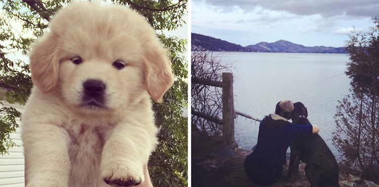 Dogs vs. Boyfriends: Which One Should You Get?