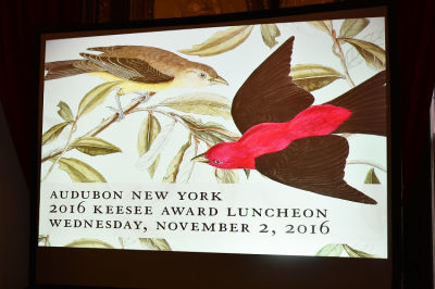 AUDUBON New York Presents The 2016 KEESEE Luncheon