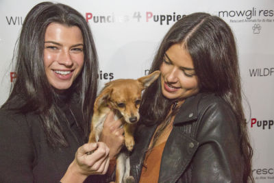 destiny sierra in Punches for Puppies: Mowgli Rescue's Fundraiser Event